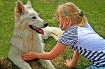 zabawy z psem