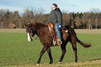 człowiek jeździ na koniu